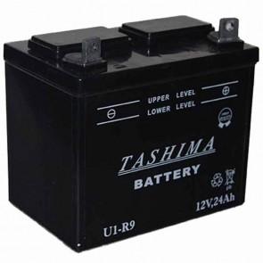 Batterie pour tondeuse autoportée 12v - 24Ah - L: 195 - l: 130 - H:185mm + à droite (livrée sans acide)