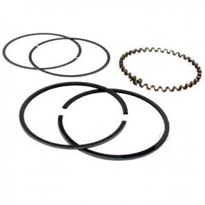 Jeu de segments adaptable pour KOHLER modèles K301, 12 ch. (chrome). Remplace origine: 235889